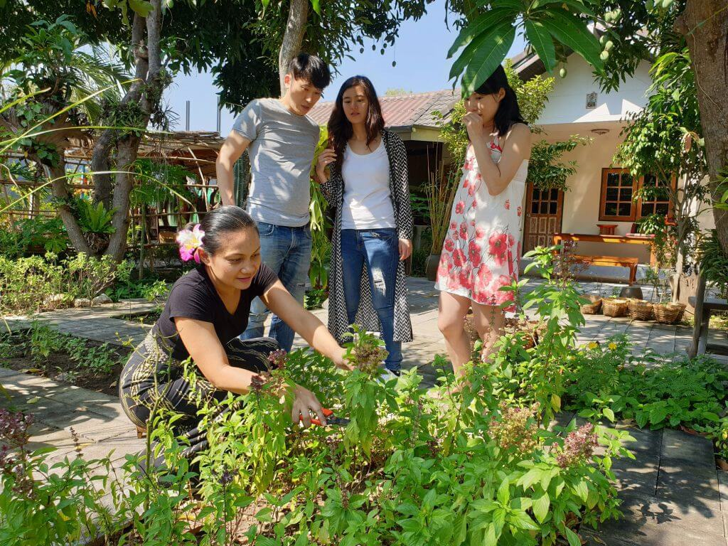 garden-1-1024x768